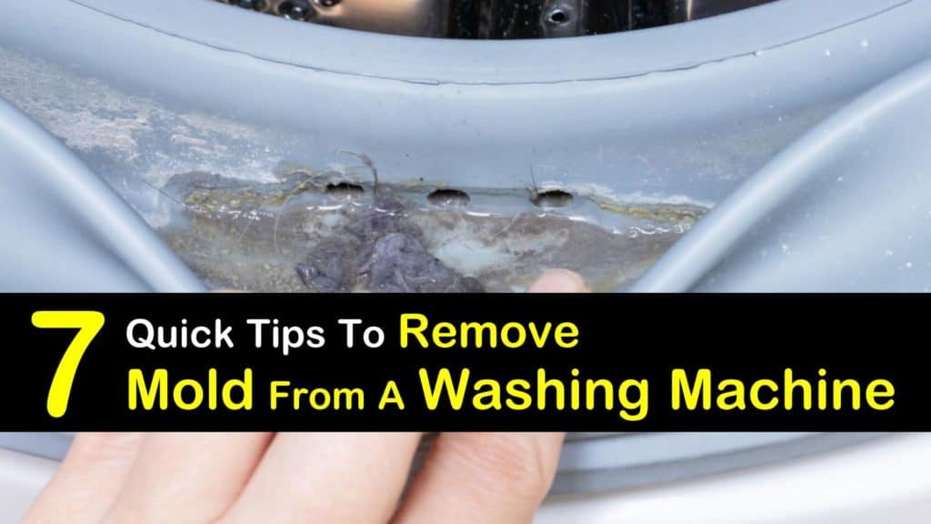Mold in Washing Machine titleimg1