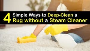How to Clean a Rug without a Steam Cleaner titleimg1