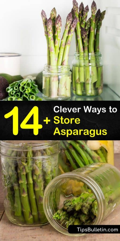 Learn how to store fresh asparagus in the crisper by wrapping the cut ends in paper towel, or refrigerate them by wrapping the bunch in a rubber band and placing the cut ends in an inch of water to prevent the veggies from getting mushy. #storing #fresh #asparagus #storage #storeasparagus
