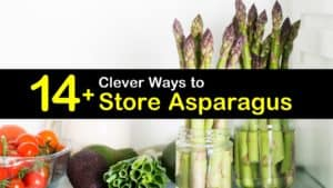 How to Store Asparagus titleimg1