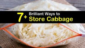 How to Store Cabbage titleimg1
