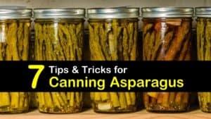 Canning Asparagus titleimg1