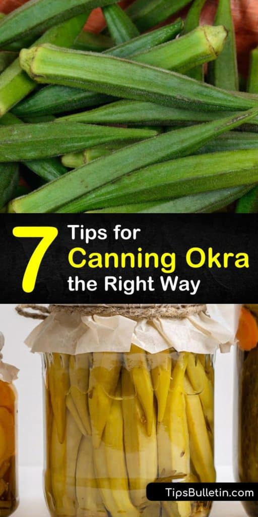 Learn how to can fresh okra using these tips and tricks. Our favorite okra recipes include adding apple cider vinegar or garlic cloves to pint jars with hot water, so you don't even require a canner. #canningokra #howtocan #okra #okrarecipes
