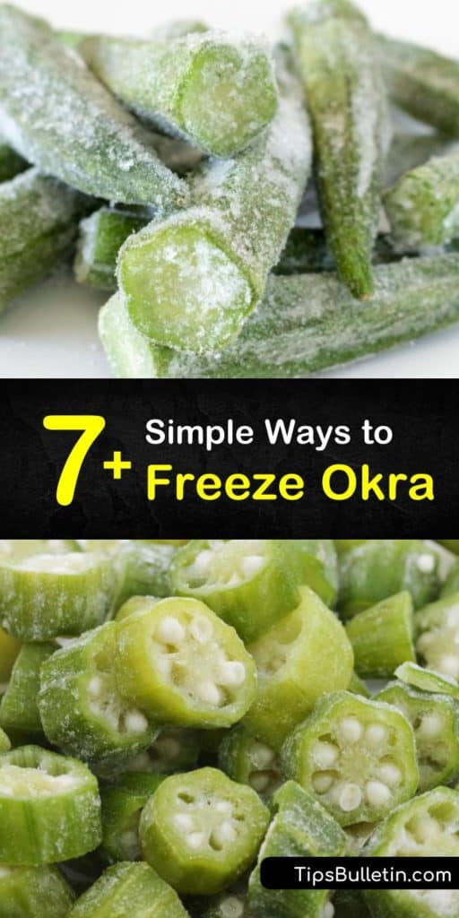 Learn how to freeze fresh okra with and without blanching and store them in freezer bags for up to one year. Freezing okra is easy, whether it is cooked or fried okra for soups and stews, or freeze dried okra for snacking. #howto #freezeokra #freezingokra #freeze #okra