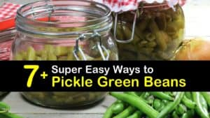 How to Pickle Green Beans titleimg1