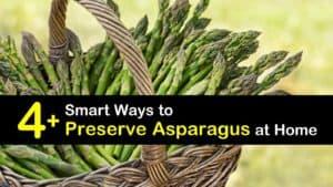 How to Preserve Asparagus titleimg1