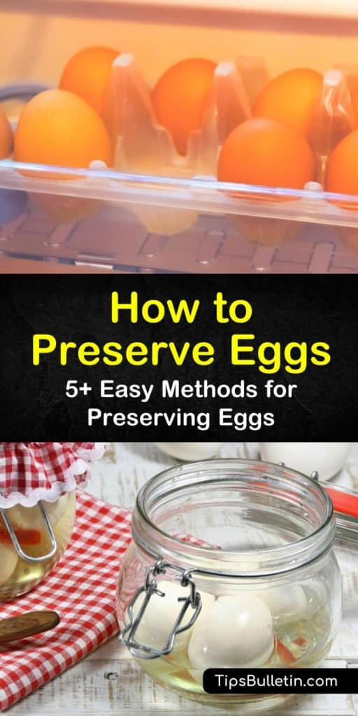 Learn how fresh eggs can be stored for years to come by using mineral oil and water glass. This guide includes everything you need to know for when you want to preserve eggs, store eggs, or even make pickled eggs. #preserve #fresh #eggs #storeeggs