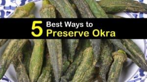 How to Preserve Okra titleimg1