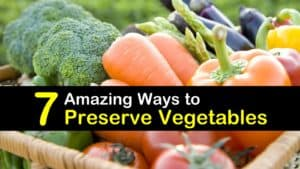 How to Preserve Vegetables titleimg1