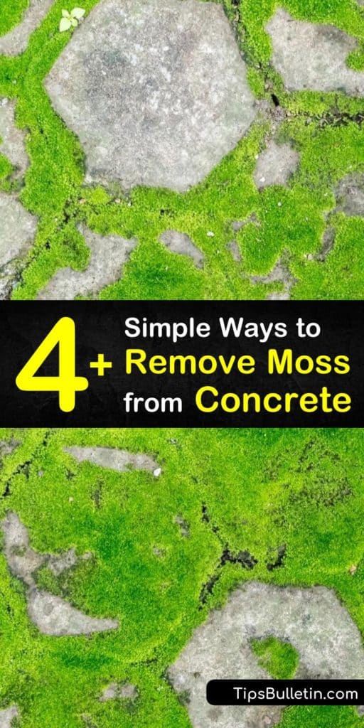 Learn how to remove moss from concrete surfaces as a DIY home improvement project. Cover the affected area with baking soda and use a scrub brush for scrubbing away dead moss, or spray with a bleach solution. #concretemossremover #removingmoss #moss #concrete #cleaning