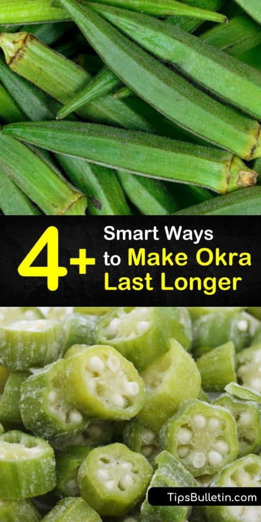 Consume delicious okra pods year-round with these recipes that store okra for long periods of time. Blanching okra plants is the first step in storing fresh okra that can be made into pickles, soups, and gumbo. You don't want to miss out on these tasty dishes. #long #okra #last