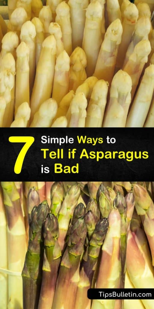 All your questions regarding the shelf life of asparagus spears are answered in this article including tips on how to store asparagus and other veggies, if the dark green color is normal, and even what to do with that pesky rubber band that holds them together. #badasparagus #asparagus #bad