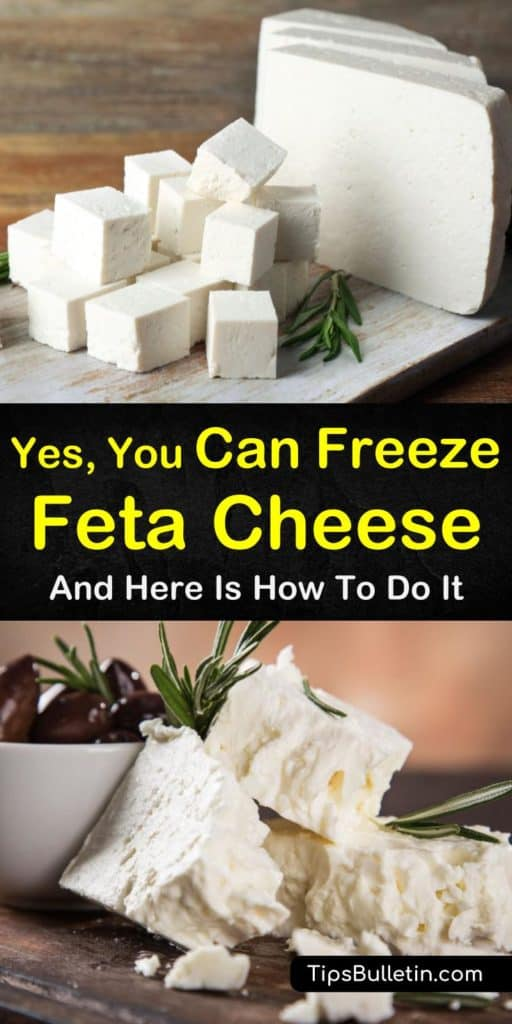 Can you freeze feta cheese? Find out how you can keep feta cheese from going to waste! With this easy guide to freezing feta cheese, you can save money and keep this delicious cheese around for longer. #feta #cheese #freezing