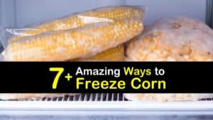 How to Freeze Corn titleimg1