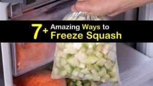 How to Freeze Squash titleimg1