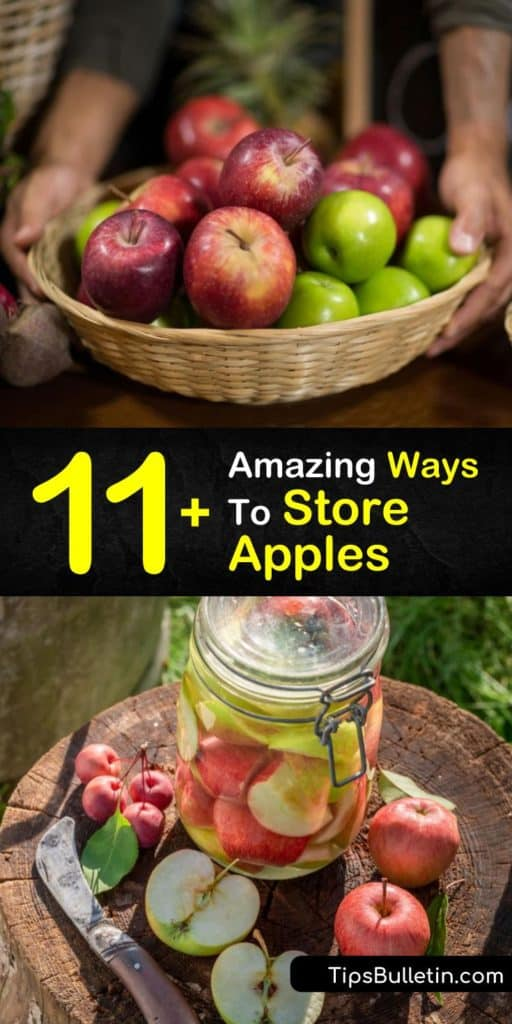 Is there really such a thing as a bad apple? Discover how to make apple pie, applesauce, and other treats from fuji and golden delicious apples, all while learning about long-term storage for bushels brought home from the apple orchard. #howto #store #apples