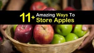How to Store Apples titleimg1
