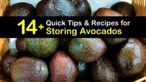 How to Store Avocados titleimg1