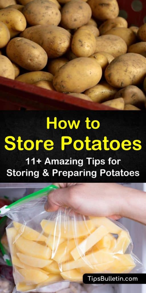 Grow potatoes at home and store them short term in the fridge or long term in the root cellar. Learn in pantry storage techniques as well as potato canning and dehydrating methods and recipes. #potatostorage #storingpotatoes #potatoes