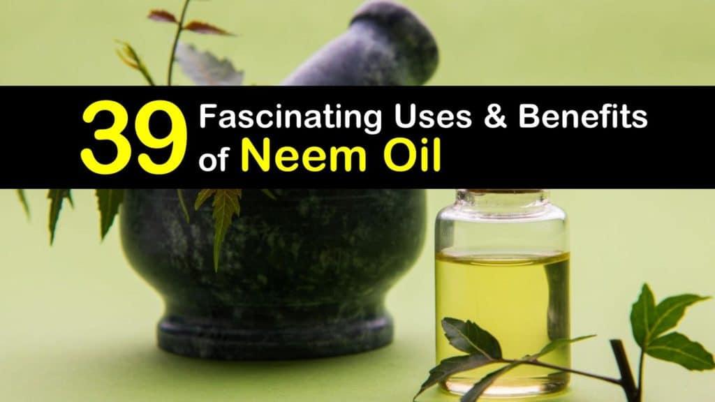 neem oil titleimg1