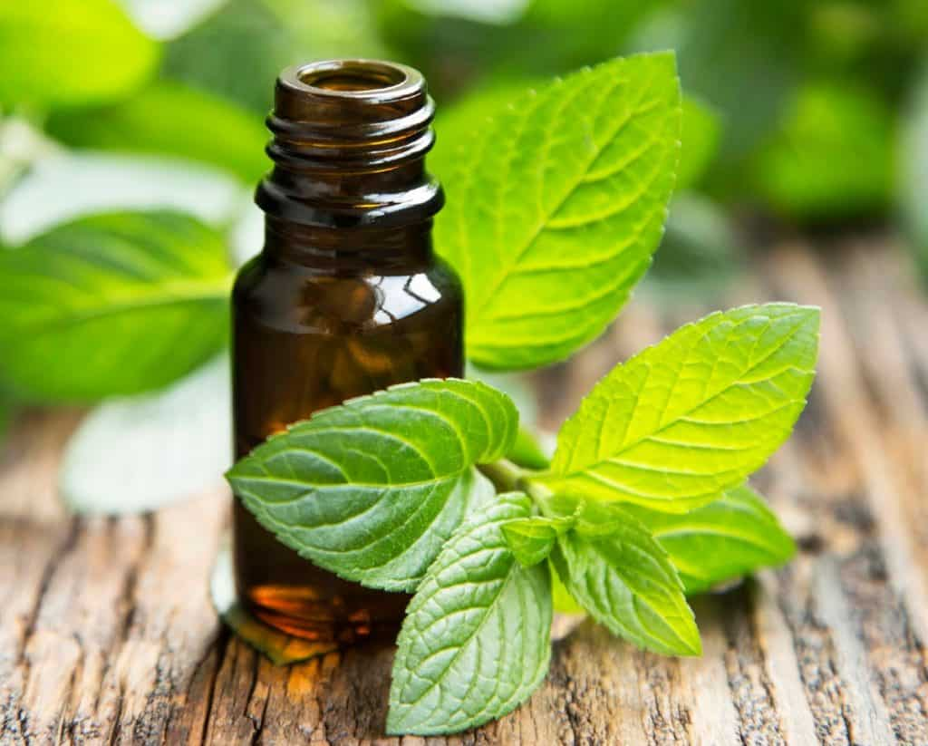 Dab peppermint oil on a cold sore with a cotton swab.