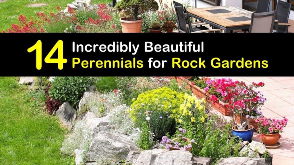 Perennials for Rock Gardens titleimg1
