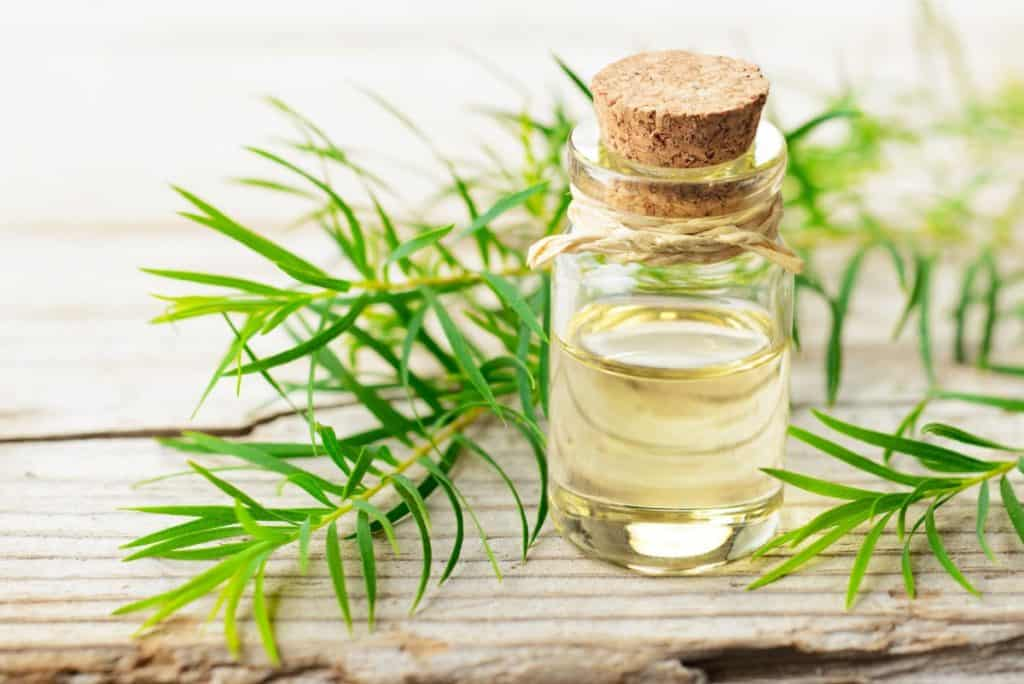 Tea tree oil reduces the size of cold sores up to 50%.