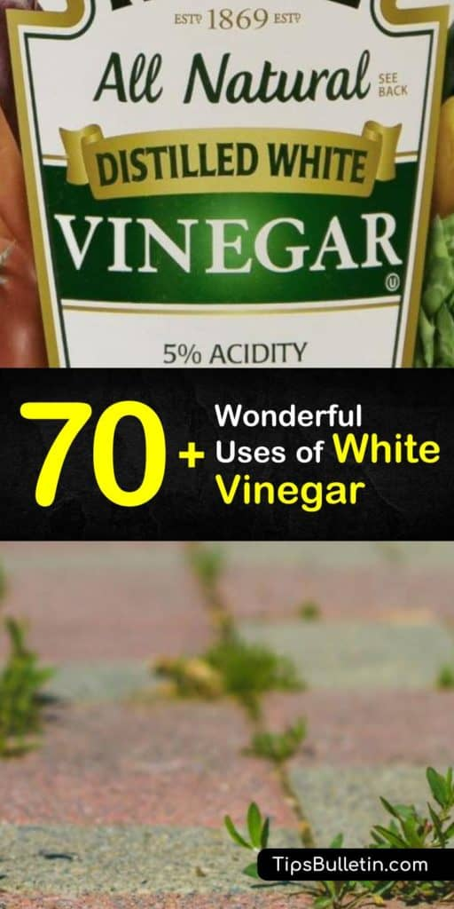 Over 70 uses and benefits of white vinegar - including using vinegar for health and beauty(acne, skin), home cleaning and cooking. As well as for plants and in the garden to repel ants and spiders, kill the weed in pathways and make flowers bloom again. #vinegar #cleaner #cleaning #plants
