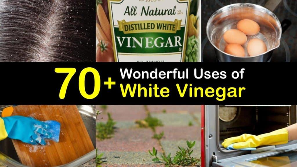 vinegar titleimg1
