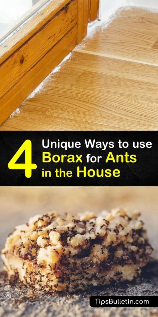 Find out how to get rid of an infestation of sugar ants, carpenter ants, or fire ants using Borax. Lay ant bait made of peanut butter or sugar and Borax near ant trails so that ants will carry the ant killer back to their nest, eliminating the ant problem. #ants #Borax #antkiller