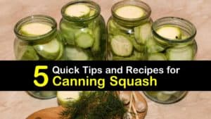 Canning Squash titleimg1