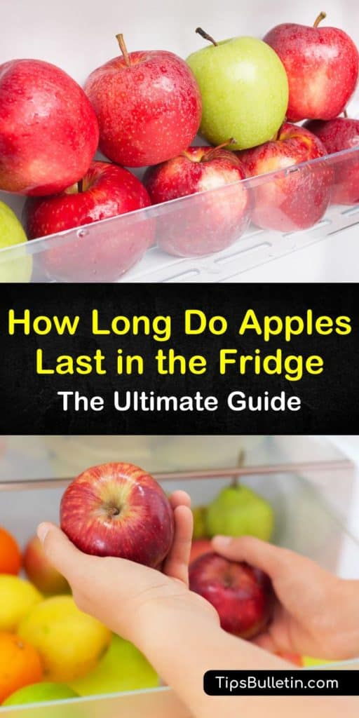 How long do apples last? The answer all depends on whether you store them in the crisper drawer or at room temperature. Granny Smith apples last the longest with their thick skin, and taste great in apple pie or applesauce. #freshapple #appleslast #storingapples
