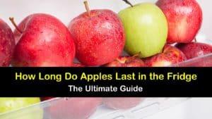 How Long do Apples Last in the Fridge titleimg1