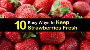 How to Keep Strawberries Fresh titleimg1