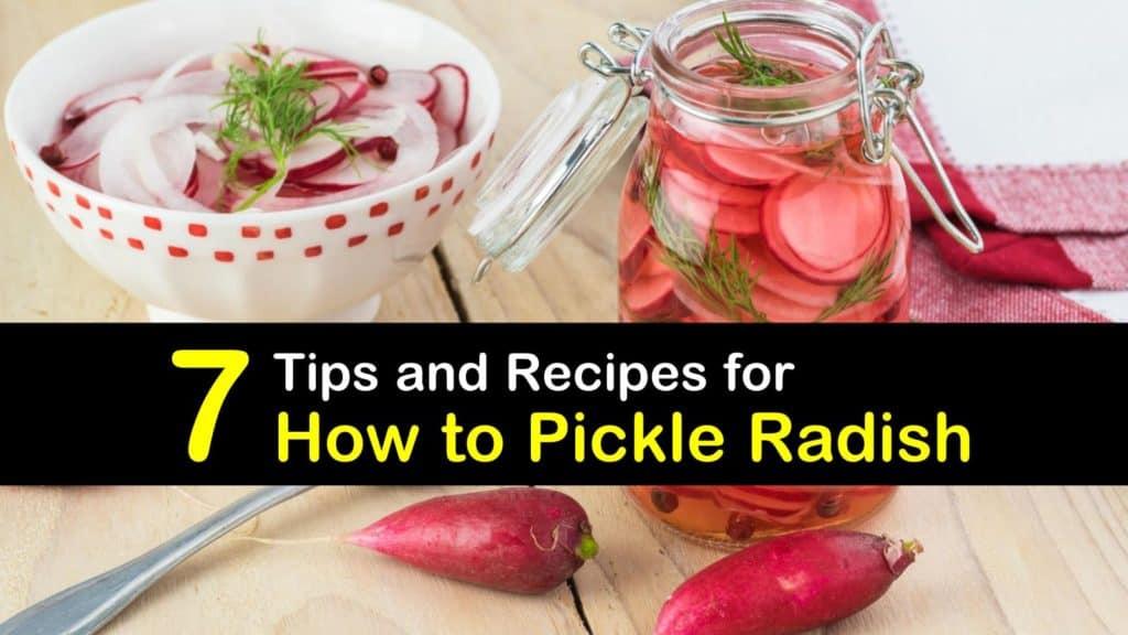 How to Pickle Radish titleimg1