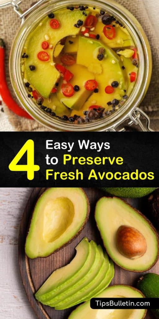 Discover numerous ways to preserve avocados. Store fresh avocados at room temperature; once ripe, store in the fridge. Brush avocado halves with lime juice to prevent discoloration. Turn frozen avocados into smoothies, guacamole, and more. #preserveavocados #avocado #preserving