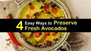 How to Preserve Avocados titleimg1