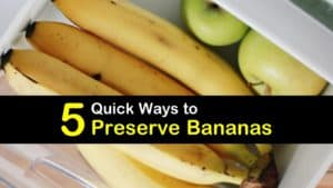 How to Preserve Bananas titleimg1