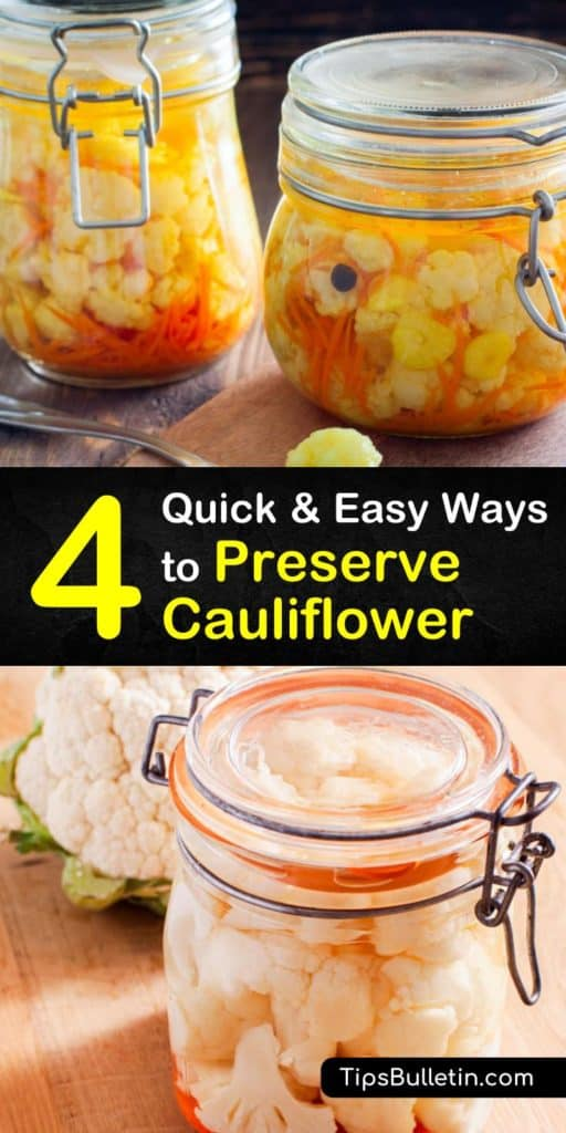 Come let us show you the different ways to preserve fresh cauliflower florets to use as a substitute in your next side dish. Blanching is used when you freeze cauliflower in freezer bags, but it's not used when pickling or fermenting.#preservecauliflower #storecauliflower #cauliflower