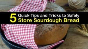 How to Store Sourdough Bread titleimg1