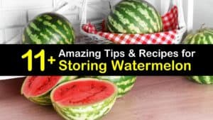 How to Store Watermelon titleimg1