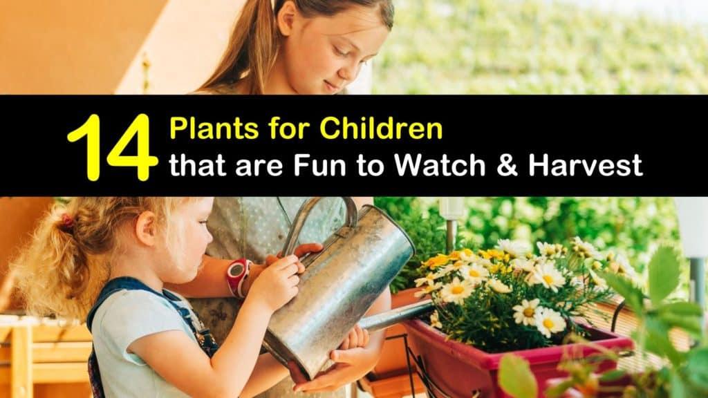 Plants for Children titleimg1