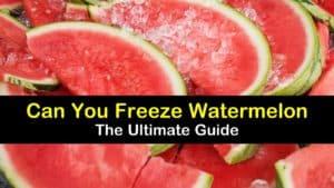 Can You Freeze Watermelon titleimg1