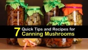 Canning Mushrooms titleimg1