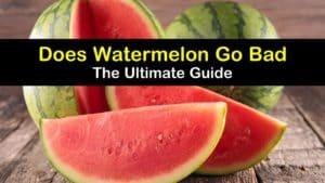 Does Watermelon Go Bad titleimg1