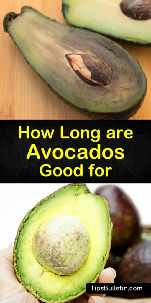 Let us show you how to store avocados at room temperature and in the fridge using only lemon juice, lime juice, and an airtight container. Extend the shelf life of your avocados and learn tips on how to determine their ripeness before you buy them. #avocados #last #ripe