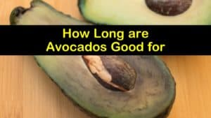 How Long are Avocados Good for titleimg1
