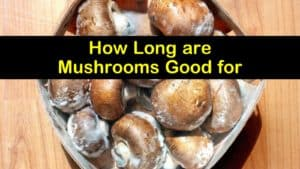 How Long are Mushrooms Good for titleimg1
