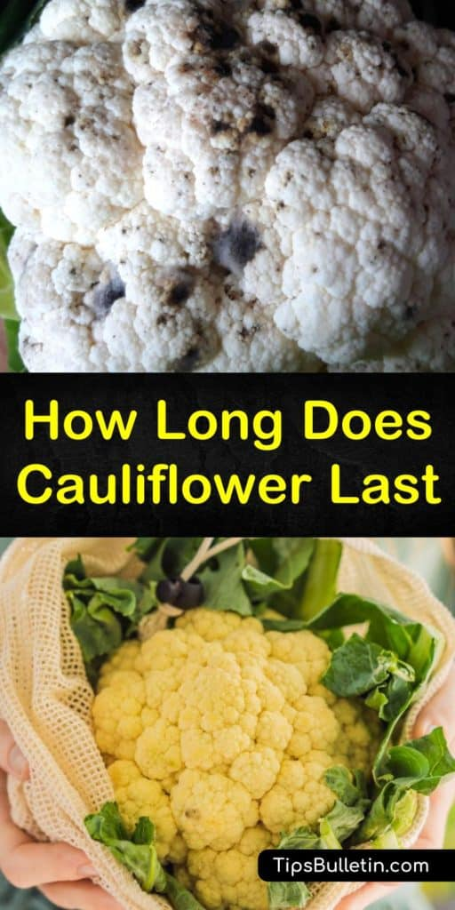 Transform a head of cauliflower into a new dish that makes cauliflower last longer than all your other veggies. We teach you how to blanch and store cauliflower and transform cooked cauliflower into new foods with these fresh cauliflower storage tips and recipes. #keep #cauliflower #fresh