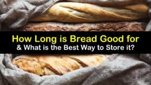 How Long is Bread Good for titleimg1